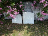 Naturally pink - gravestones at Dockyard